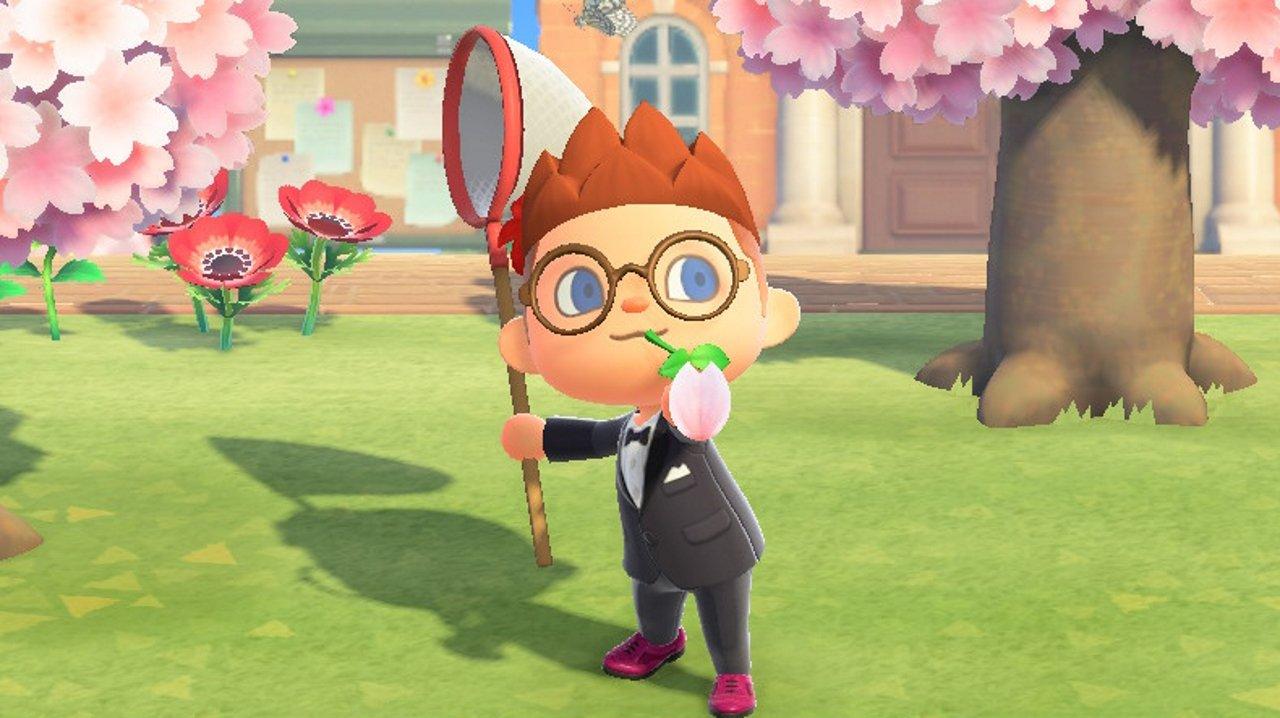Cherry Blossom Petals In Animal Crossing New Horizons Allgamers