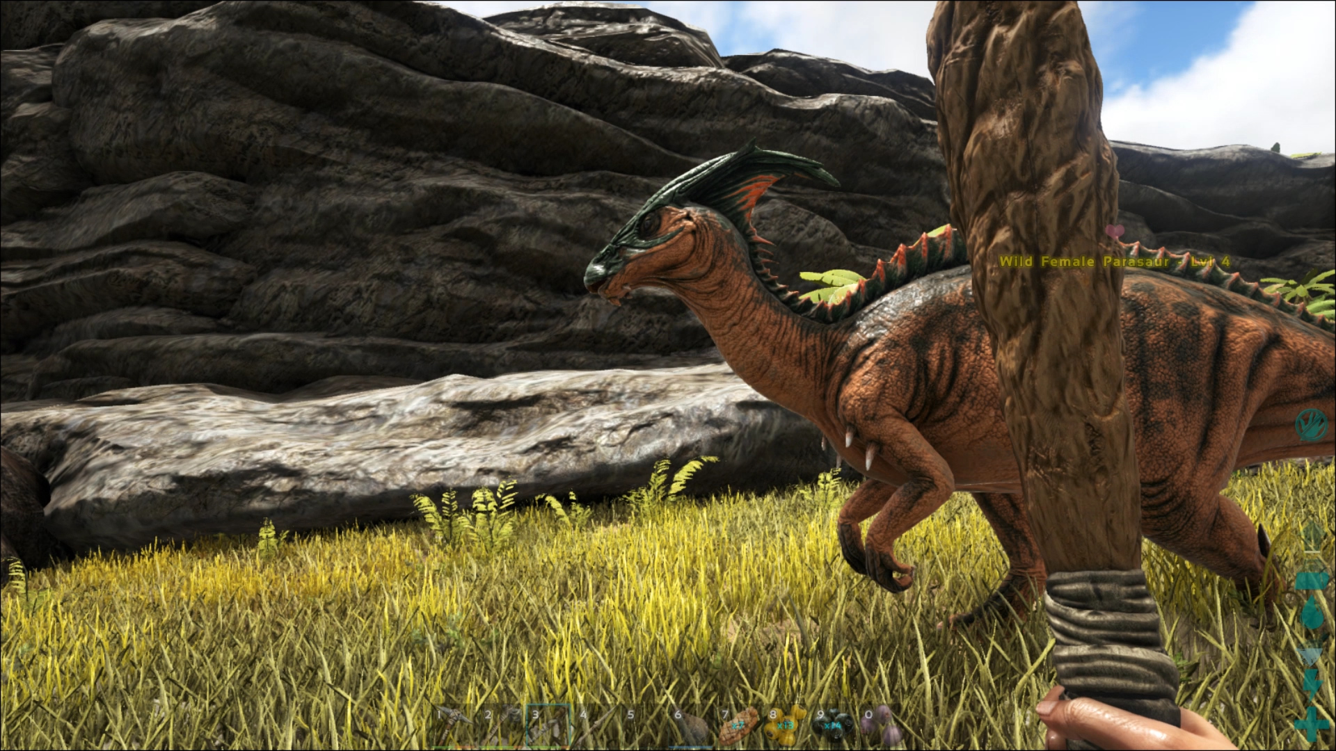 A Parasaur - How to tame your first dinosaur in Ark: Survival Evolved