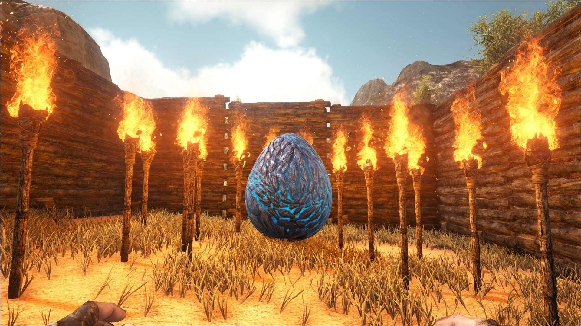 A Wyvern egg is needed - How to tame a Wyvern