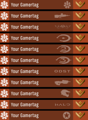 Halo 3 had small icons that were available from participating in events or having played old Bungie games.