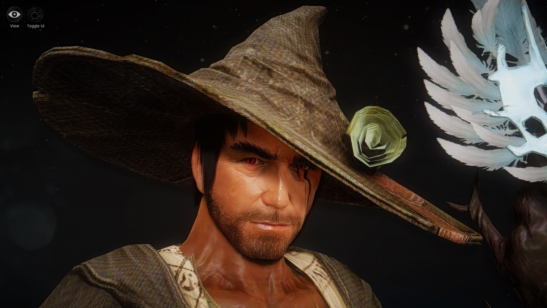 Wizard Guide - Guide to all classes in Black Desert Online