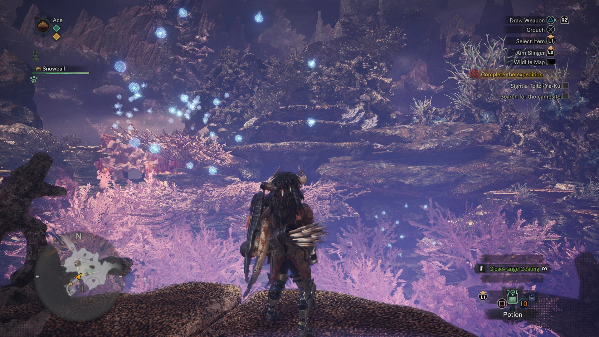 How to Find and Harvest Coral Bone in Monster Hunter: World