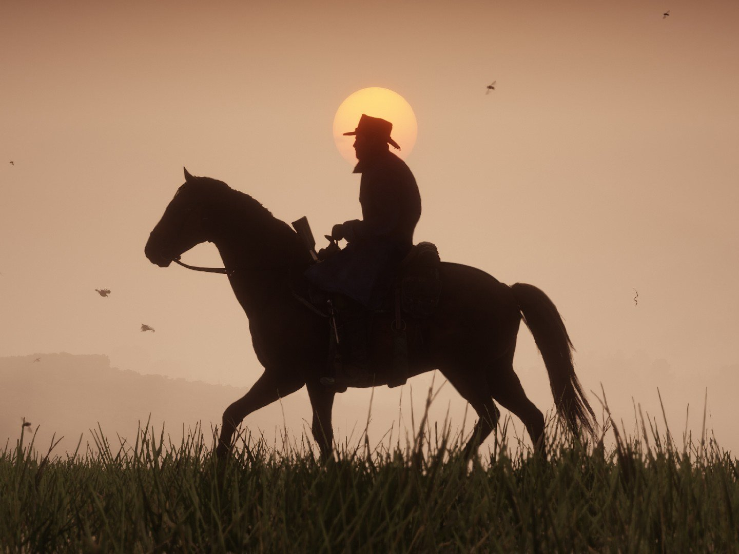 Arthur riding a horse. Horse Guide for Red Dead Redemption 2