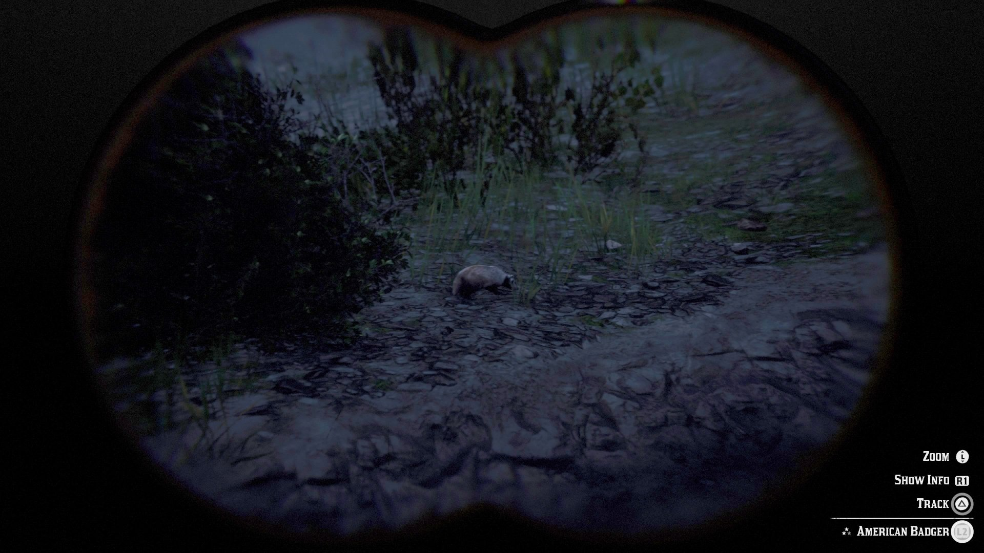 Badger locations in RDR2