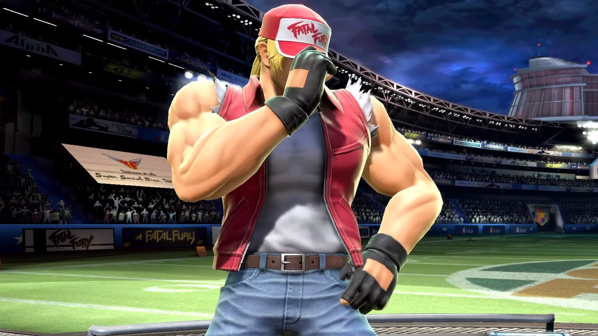 Terry Bogard Smash Ultimate