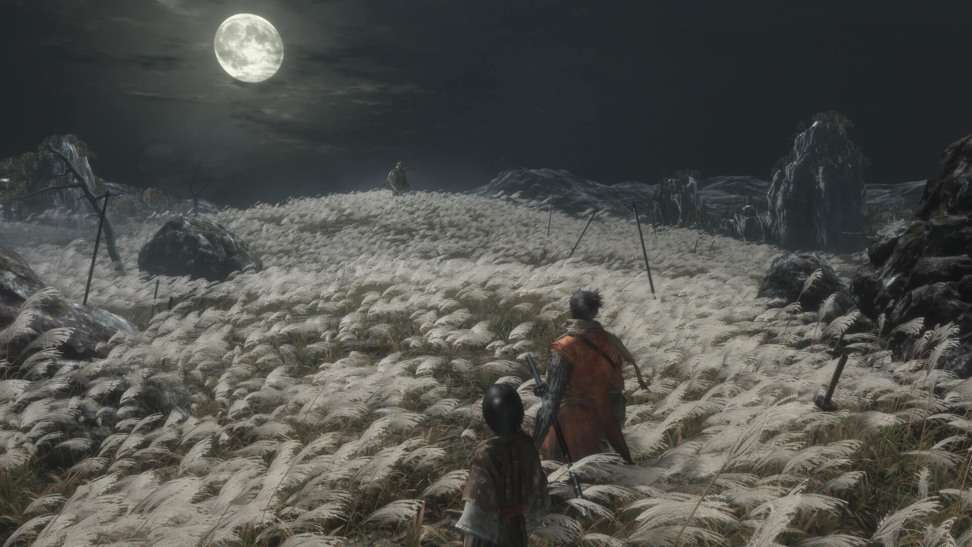 2020 New Years gaming resolutions - sekiro