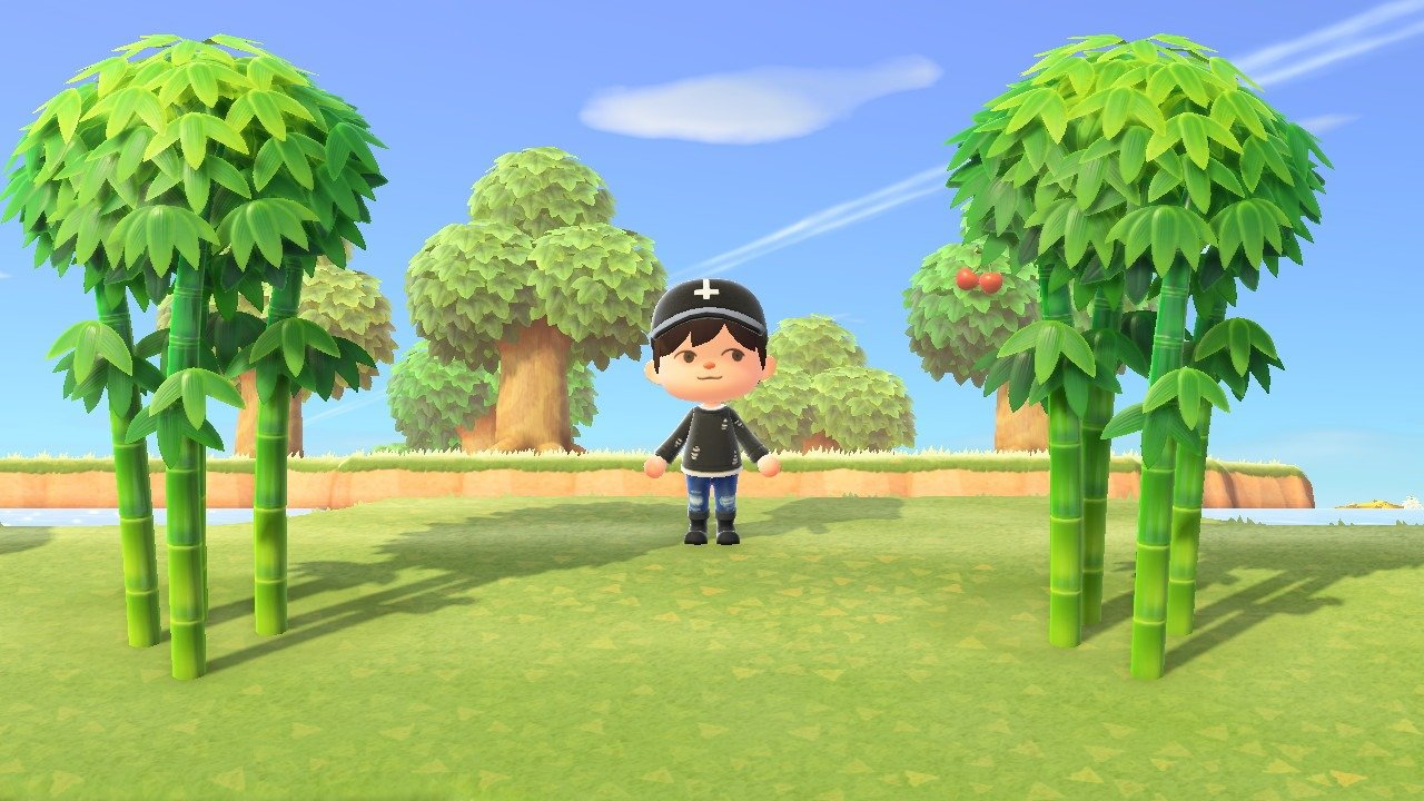 Bamboo island is great because you can dig up bamboo trees and then plant them on your own island in Animal Crossing: New Horizons.