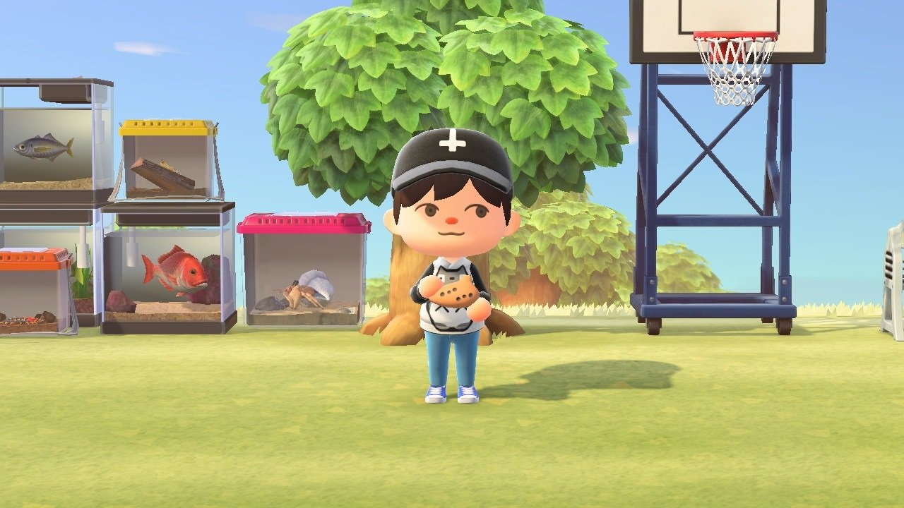 How to get the Ocarina in Animal Crossing: New Horizons
