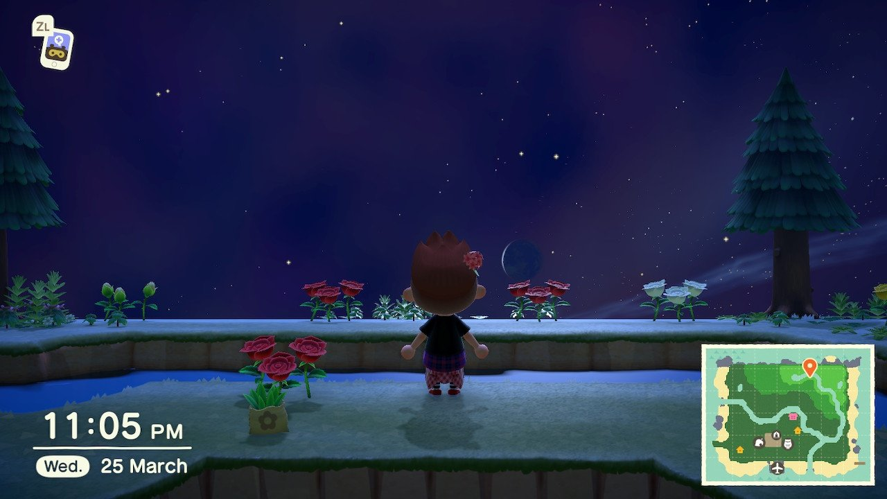 How to catch stringfish animal crossing new horizons