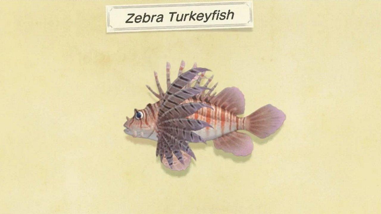 How to catch zebra turkeyfish in Animal Crossing: New Horizons