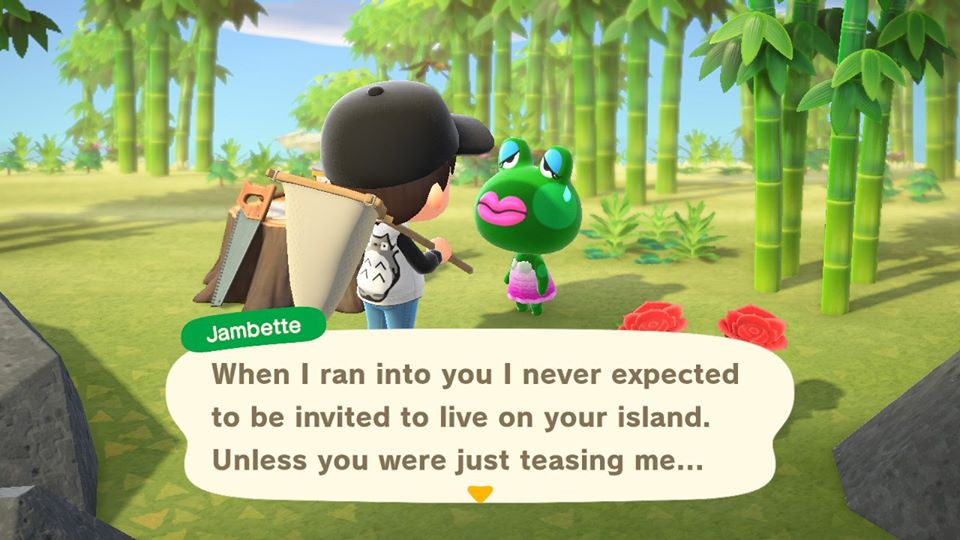 How to invite new Villagers to your island in Animal Crossing: New Horizons