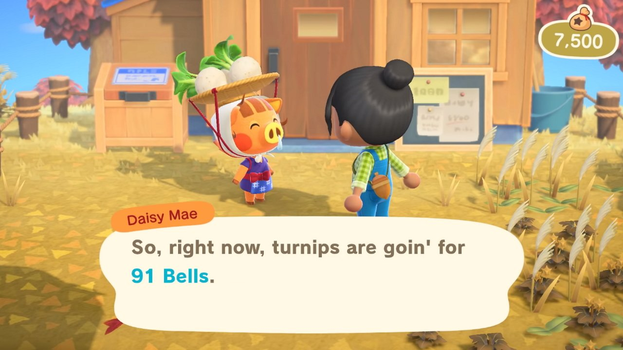What time does Daisy Mae leave animal crossing new horizons