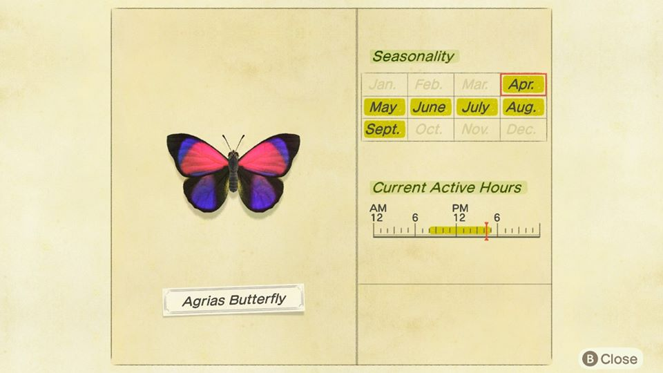 The Agrias Butterfly is active between the hours of 8 a.m. to 5 p.m. in Animal Crossing: New Horizons.