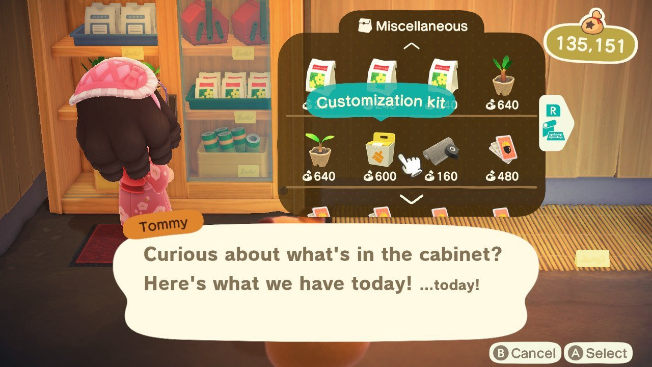 Ordering in bulk is great, but why can't we input the total number of items we want in Animal Crossing: New Horizons?