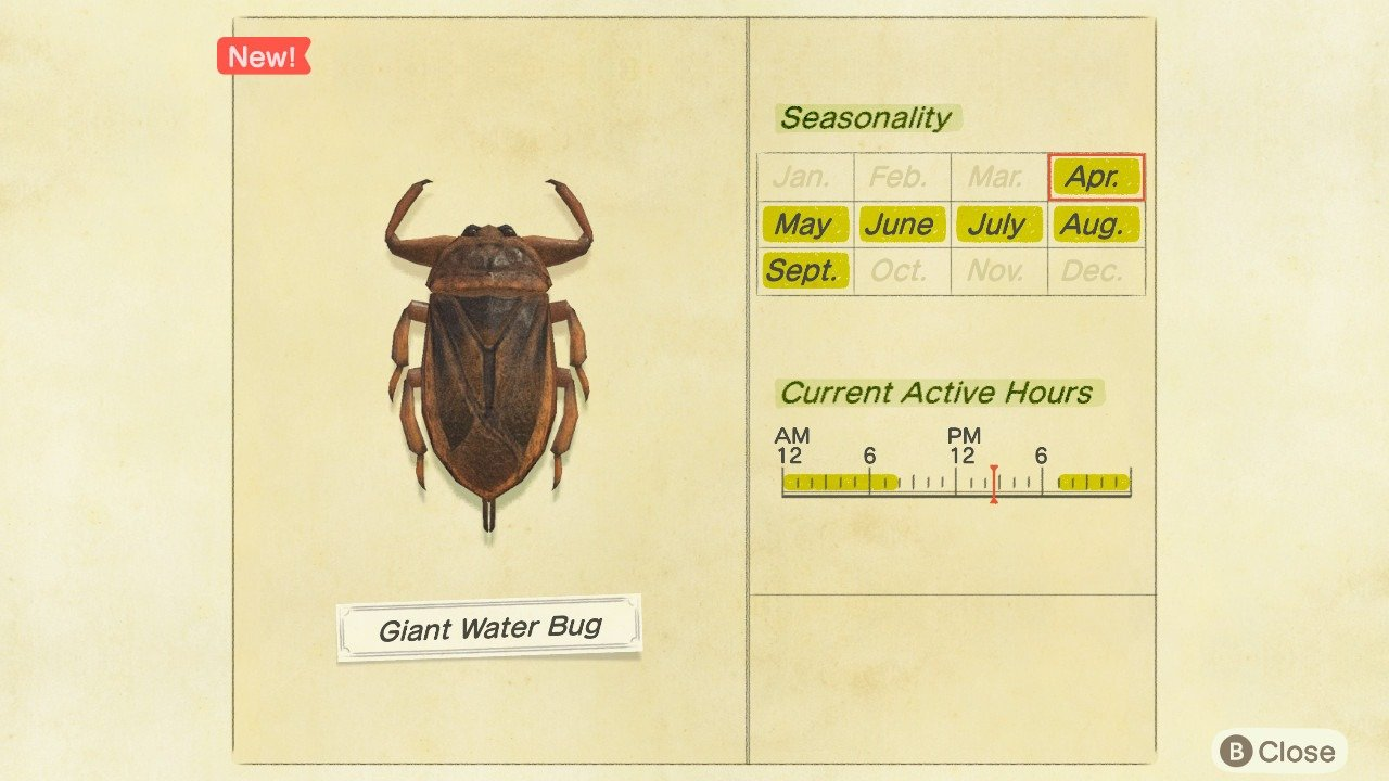 How to catch a Giant Water Bug in Animal Crossing: New Horizons