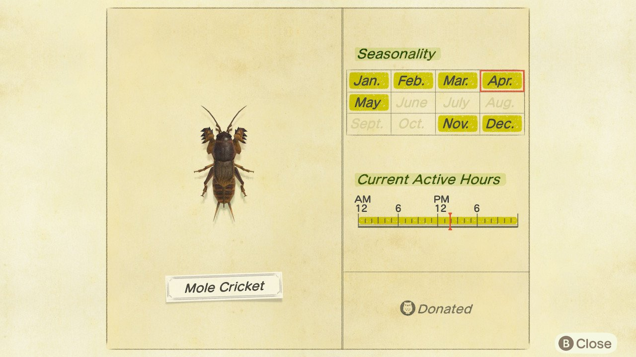 How to catch mole crickets animal crossing new horizons