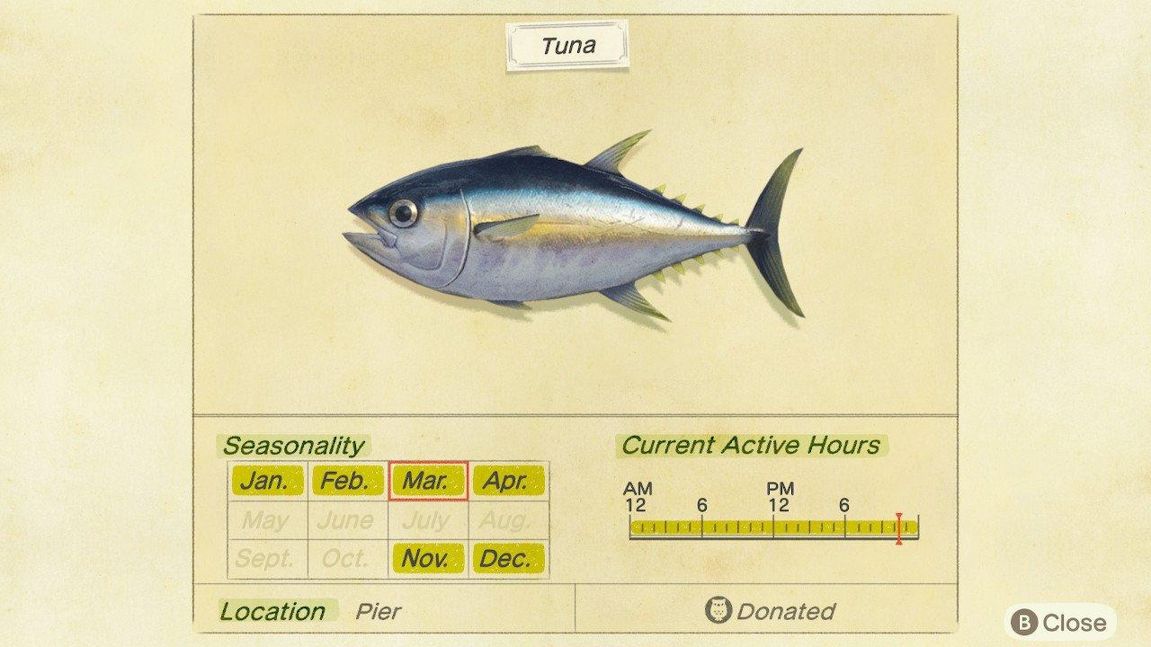 How to catch tuna animal crossing: new horizons