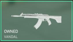 Valorant Vandal weapon