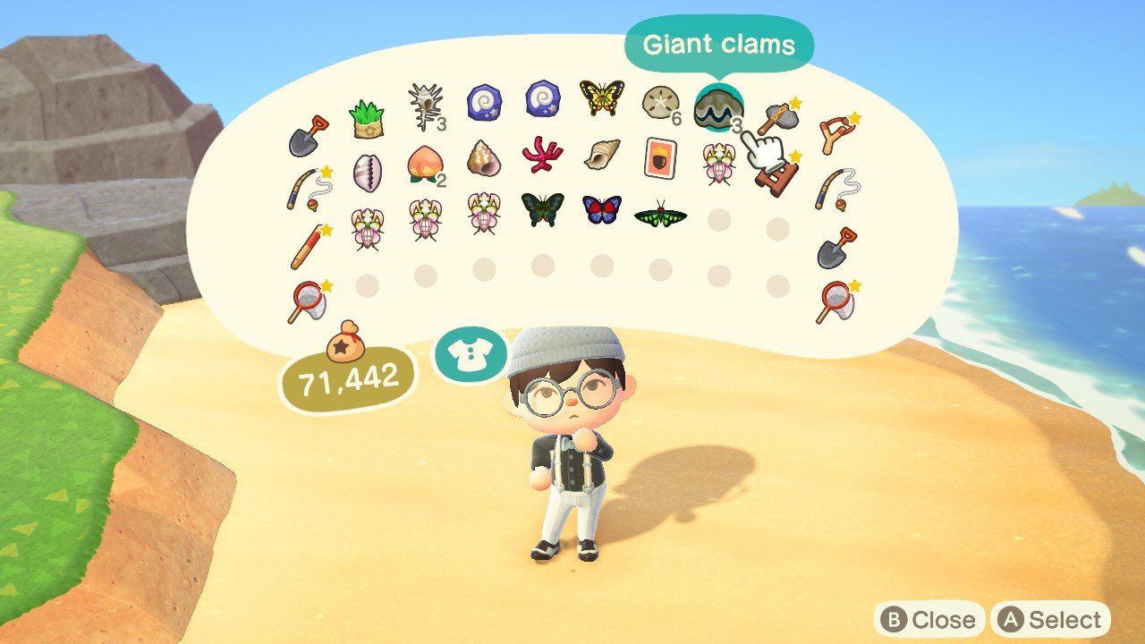 All Shell prices in Animal Crossing: New Horizons