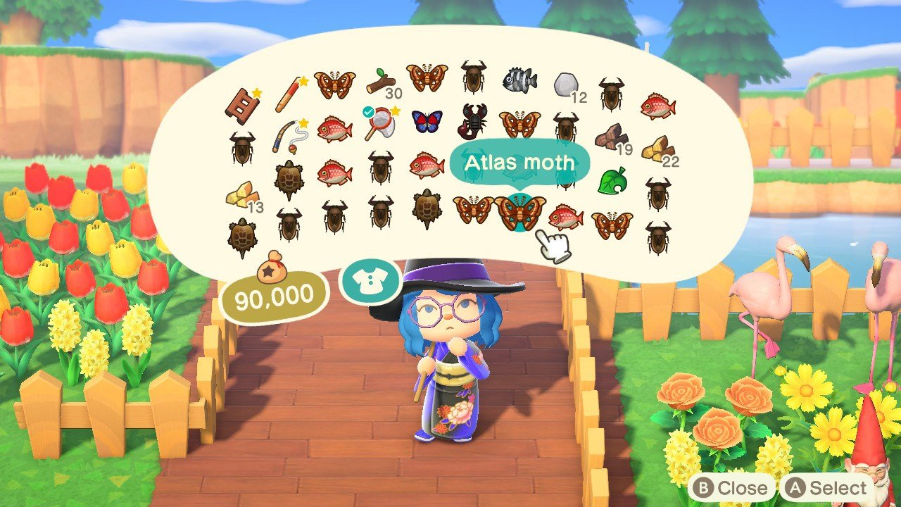 How to catch night bugs during the day in Animal Crossing: New Horizons