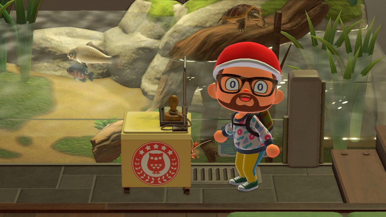 Complete the museum stamp rally in animal crossing: new horizons