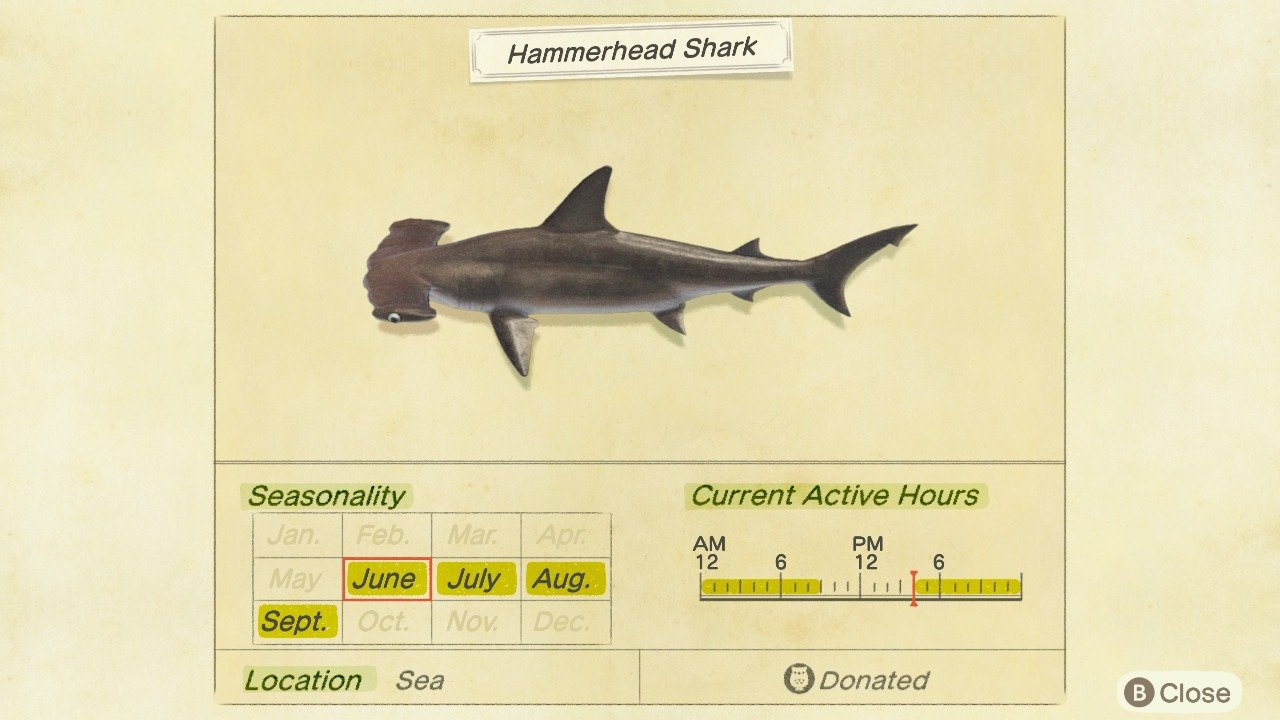 Hammerhead Sharks can be sold for 8,000 Bells each in Animal Crossing: New Horizons.