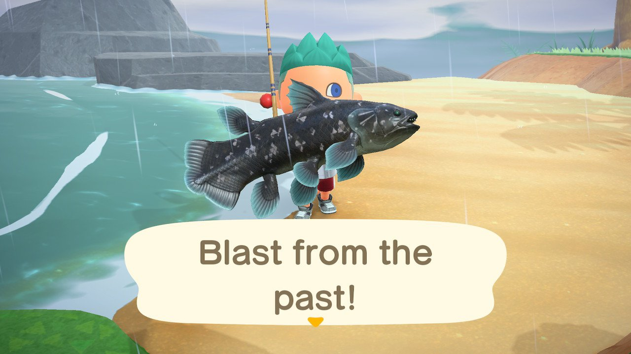 How to catch a coelacanth in animal crossing new horizons