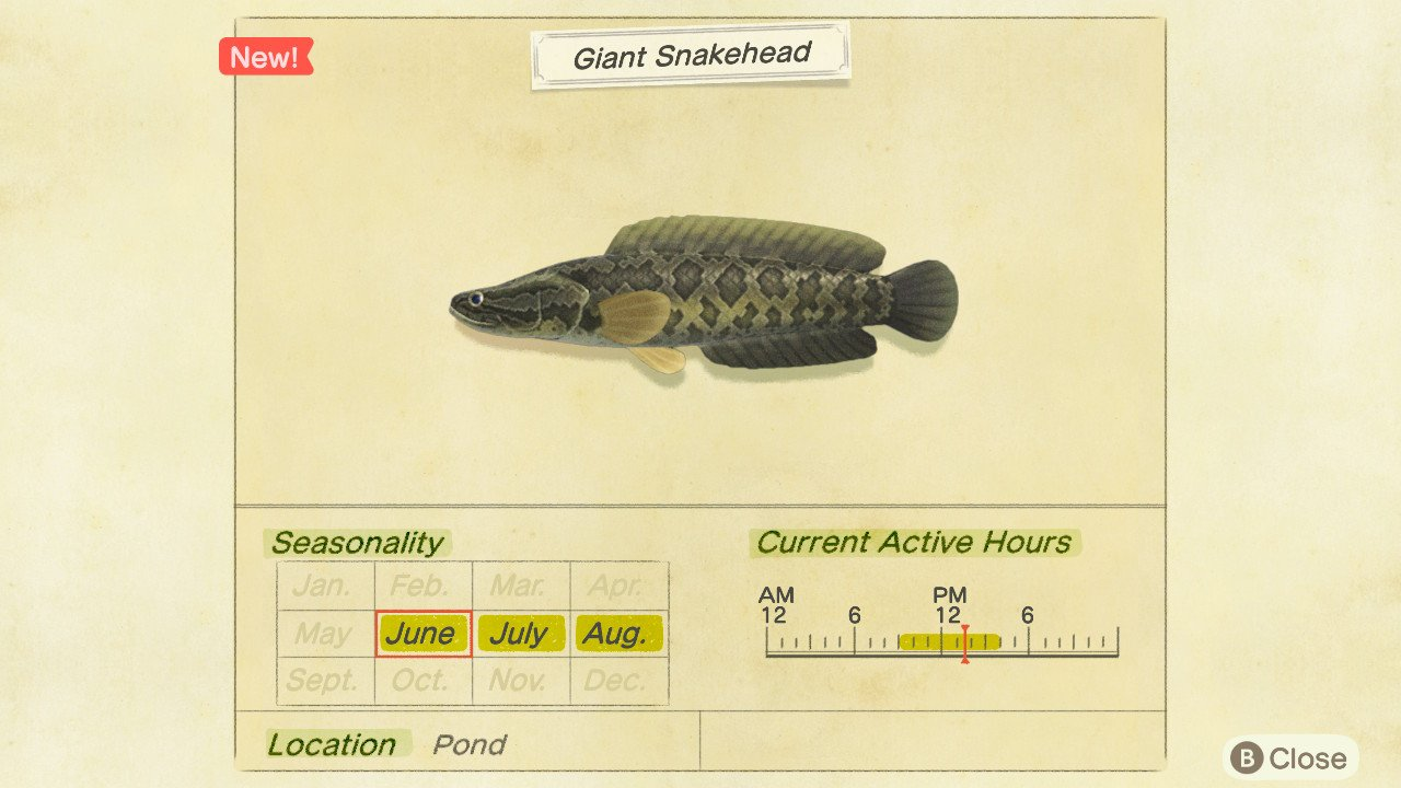 How to catch a giant snakehead in Animal Crossing: New Horizons.