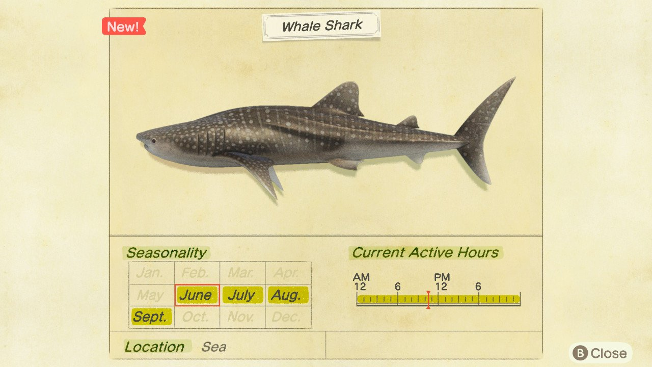 How to catch Whale Sharks in Animal Crossing: New Horizons