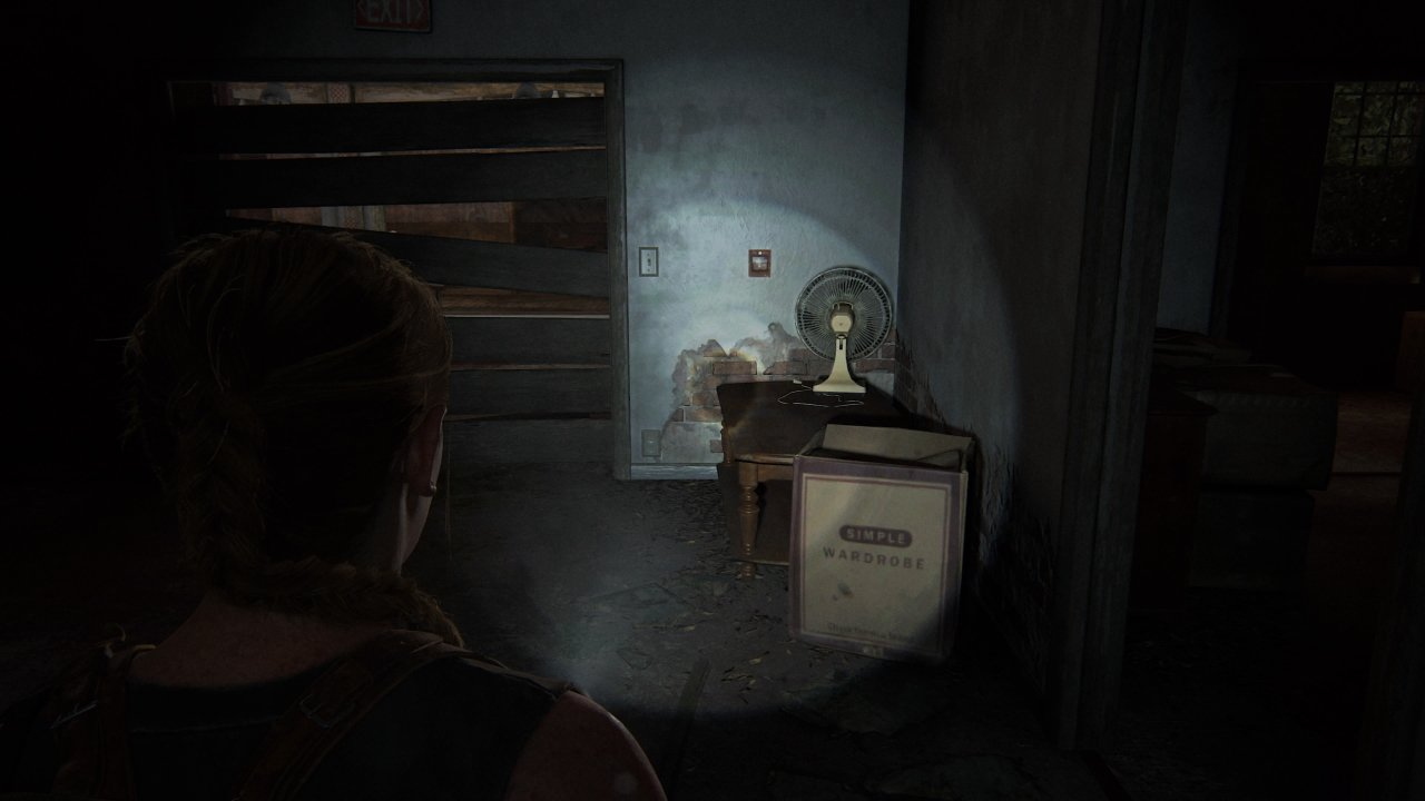 Relic of the Sages The Last of Us Part 2 Strange Artifact location