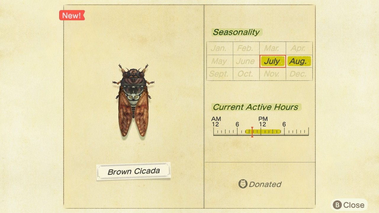 How to catch Brown Cicada in Animal Crossing: New Horizons