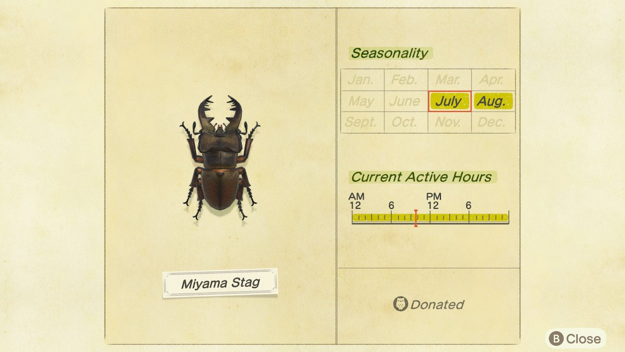 How to catch Miyama Stag in Animal Crossing: New Horizons