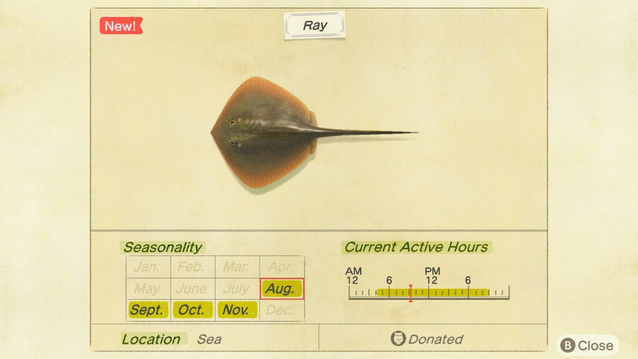 How to catch a ray in Animal Crossing: New Horizons