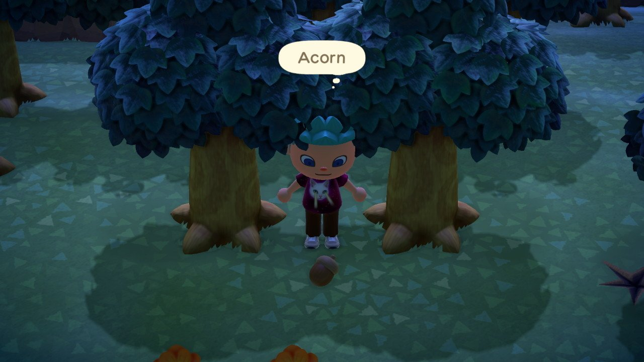 How to get acorns in Animal Crossing: New Horizons