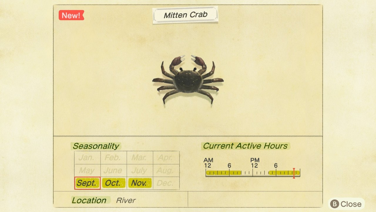 How to get mitten crabs in Animal Crossing: New Horizons - Mitten Crab Price