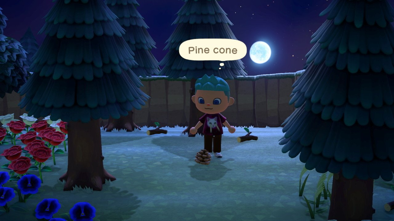 How to get pine cones in Animal Crossing: New Horizons