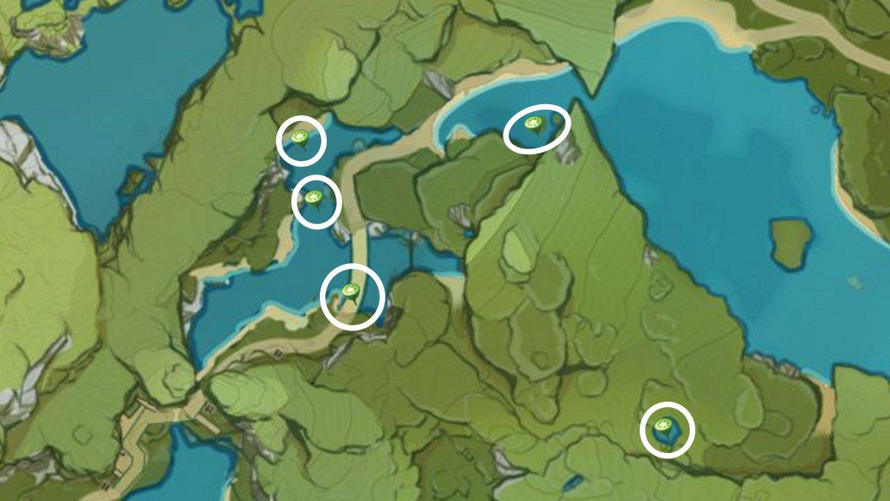 Genshin Impact lotus head locations farming guide