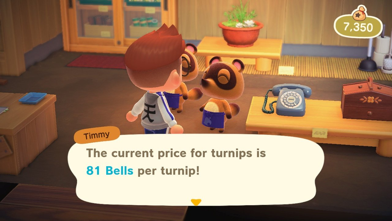 Video game stock markets animal crossing