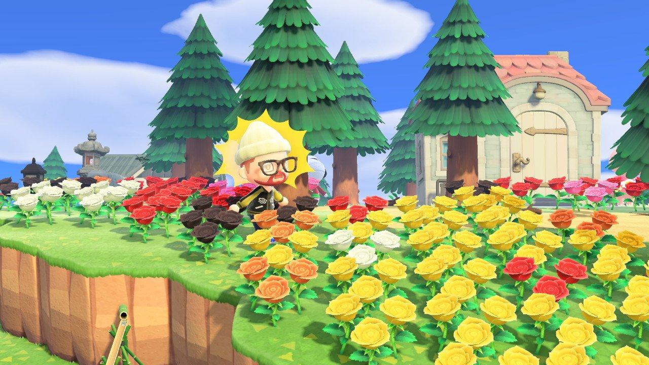 Animal Crossing Spring Video games